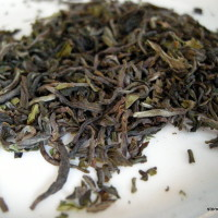 Darjeeling 1st Flush 2015 Thurbo